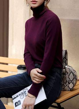 (1+1)Daily Soft Turtleneck Knit Top, Styleonme