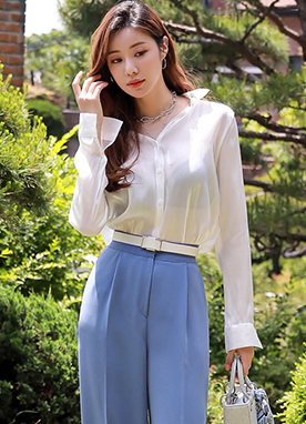 Silky Sheer Collared Blouse, Styleonme